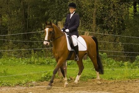Ist dein Pferd schon Frühlingsfit?